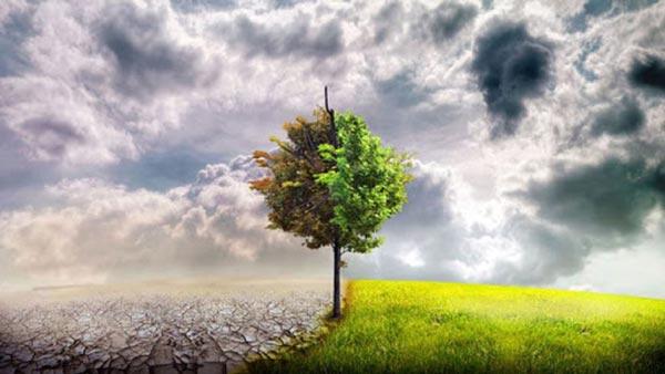 کارنامه و رتبه قبولی رشته علوم و مهندسی آب هواشناسی کشاورزی دکتری دانشگاه آزاد 98 - 99