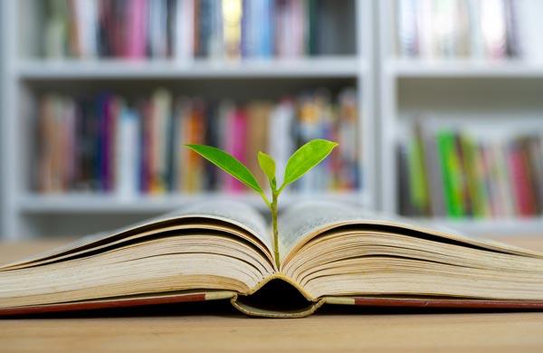 کارنامه و رتبه قبولی مطالعات جوانان کارشناسی ارشد دانشگاه سراسری 99 - 1400
